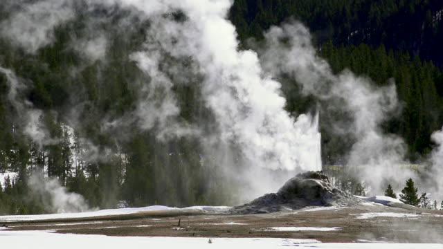 fountain geyer erupting  yellowstone national park, winter - yellowstone national park stock videos and b-roll footage
