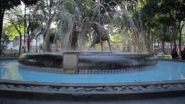 fountain in coyoacan - fountain stock videos & royalty-free footage