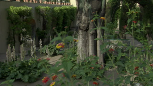 stockvideo's en b-roll-footage met cs, tu, ms, pan, fountain in formal garden, seville, andalusia, spain - tuinpad