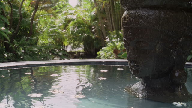 SLO, MO, CU, Fountain in tropical surroundings, Maui, Hawaii, USA