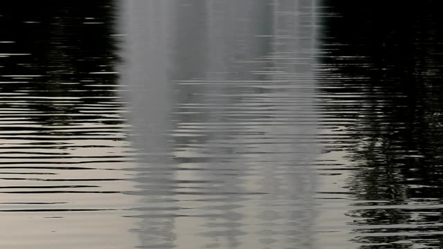 fountain reflection in the park - nightdress stock videos & royalty-free footage