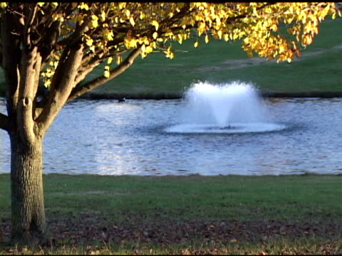 fountain - standing water yard stock videos & royalty-free footage