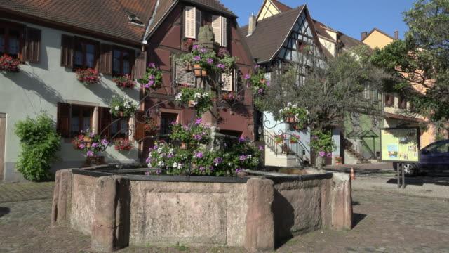 Fountain with geranium flower at market in Bergheim