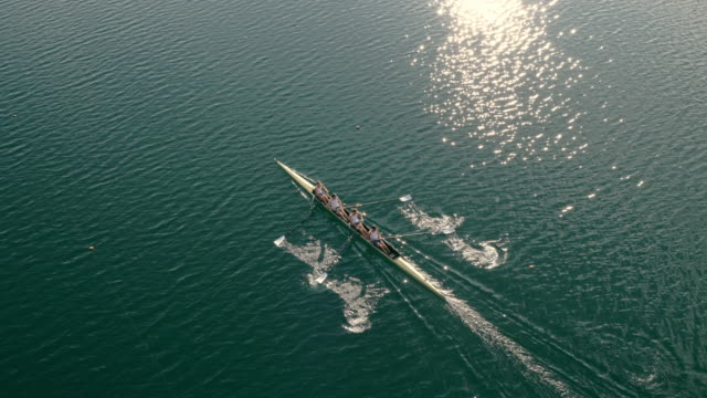 aerial four athletes rowing across the lake in sunshine - four people stock videos & royalty-free footage