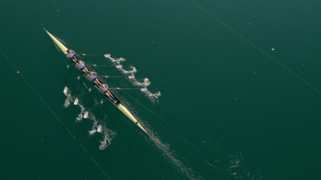 aerial four athletes sculling on a lake in sunshine - top capo di vestiario video stock e b–roll
