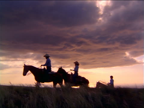 silhouette four cowboys + cowgirls riding horses in windy field at sunset - cowboyhut stock-videos und b-roll-filmmaterial