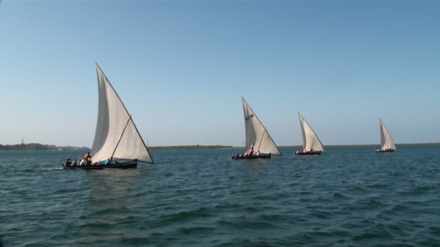 ms ts four dhows sailing on sea off coast of lamu island audio / lamu, coast province, kenya   - ダウ船点の映像素材/bロール