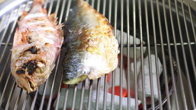 stockvideo's en b-roll-footage met four fish roasted on the grill / gimpo, gyeonggi-do, south korea - vier dieren