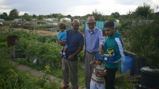 four generation family watering the allotment - local produce stock videos & royalty-free footage