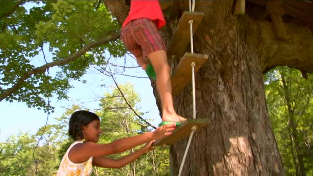 la ms tu four girls climbing rope ladder attached to tree / sherman, ct, usa - endast flickor bildbanksvideor och videomaterial från bakom kulisserna