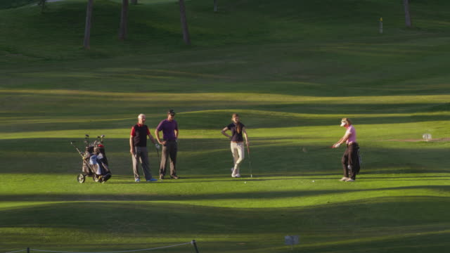 ls four golfers (mature and young couple) on fairway, mature woman plays ball  in direction of camera, red r3d 4k - golf glove stock videos and b-roll footage