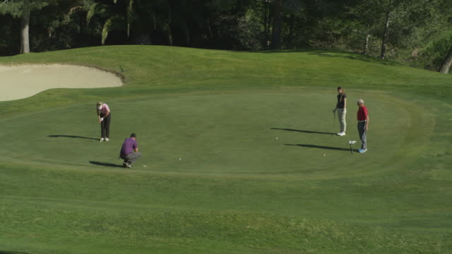 HA WS four golfers (young and mature couples) playing on putting green, RED R3D 4K