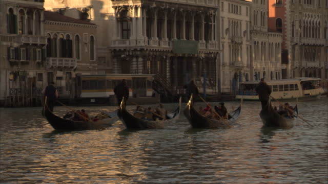 four gondolas carry passengers on the grand canal in venice. - traghetto video stock e b–roll