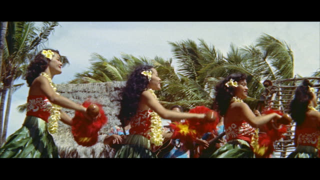 ms cu four hawaiian teenage girls doing hula / honolulu, hawaii, united states. - hawaiianische kultur stock-videos und b-roll-filmmaterial