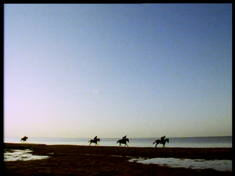 four horses and riders galloping along shore of lake issyk. - galopp gangart von tieren stock-videos und b-roll-filmmaterial