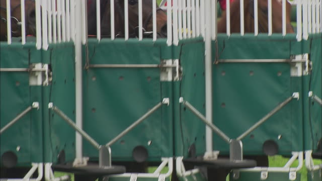 cu tu ms pan zi four jockeys sitting on horses inside gates before race at newbury racecourse / newbury, england, uk - horse racing stock videos & royalty-free footage