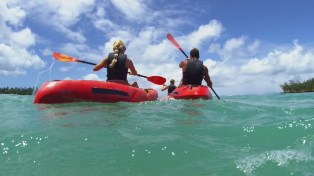 four kayakers paddle away from shore - turtle bay hawaii stock videos & royalty-free footage