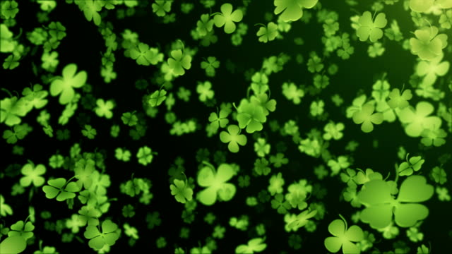 four leaf clover/shamrock (black) - loop - st. patrick's day stock videos & royalty-free footage