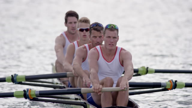 four male athletes rowing on a lake - scull stock videos & royalty-free footage