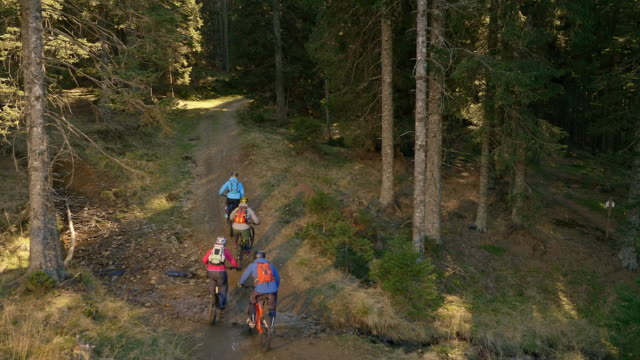 aerial four mountain bikers riding through forest in sunshine - mountain bike stock videos and b-roll footage