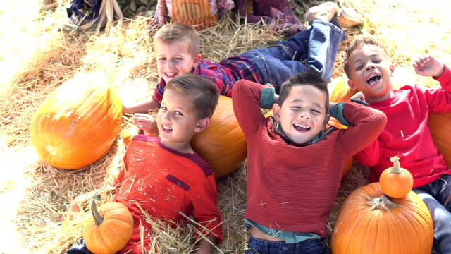 Four multi-ethnic boys in pumpkin patch
