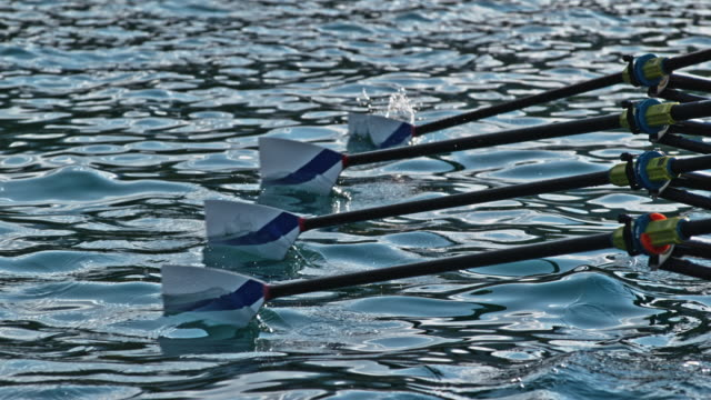 slo mo four oars striking the water surface simultaneously - oar stock videos & royalty-free footage