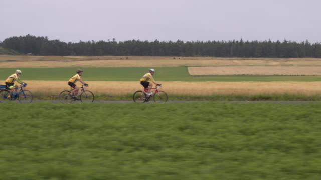 four people cycling in a rural area - attività del fine settimana video stock e b–roll