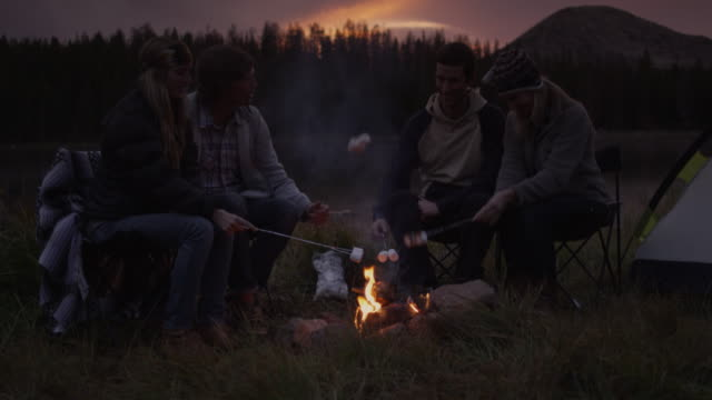 ms tu four people frying marshmallows in campfire at sunset / uinta mountains, utah, usa - lagerfeuer stock-videos und b-roll-filmmaterial