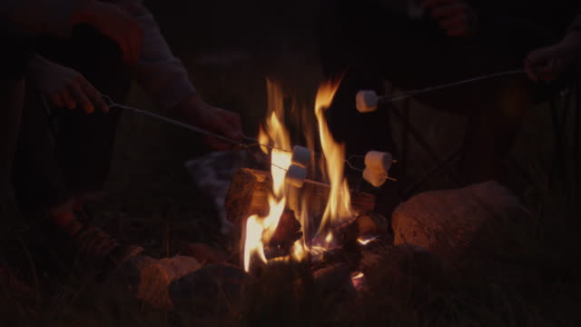 CU Four people frying marshmallows in campfire at sunset / Uinta Mountains, Utah, USA