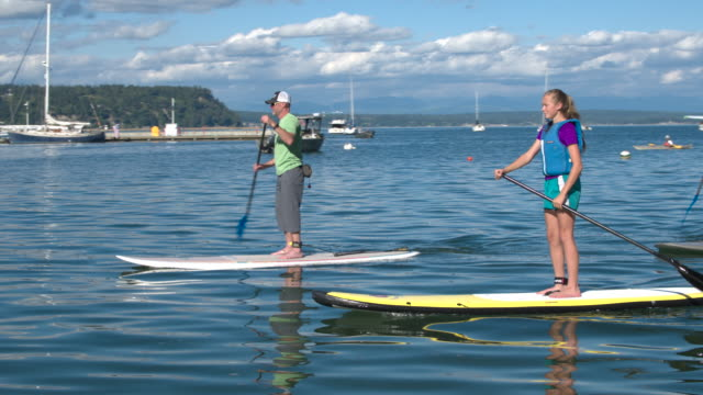 four people standup paddleboarding - pacific northwest usa stock videos & royalty-free footage