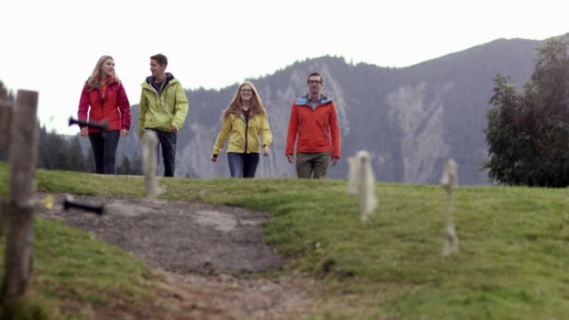 four people walking on mountain path, from the front, meadow - four animals stock videos & royalty-free footage