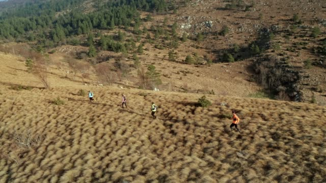AERIAL Four runners running across a grassy mountain ridge in the early morning sun