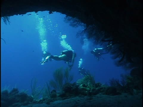 four scuba divers underwater - unknown gender stock videos & royalty-free footage