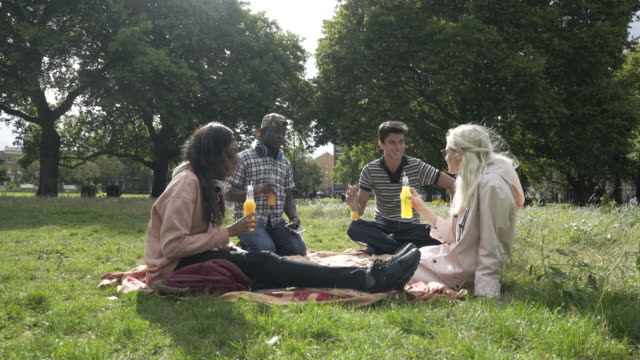Four teens sitting together in the park, making a toast.
