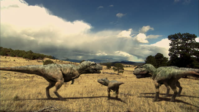 CGI, MS, Four Tyrannosaurus rexes in field
