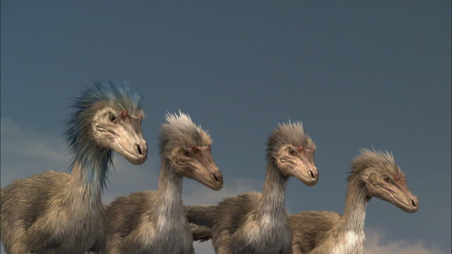 cgi, cu, four velociraptors standing side by side - paleozoology stock videos and b-roll footage