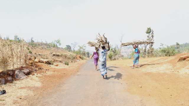 Four women in colorful clothing carrying long branches on top of their heads at a rural area in Nashik a region located in the northwestern part of...