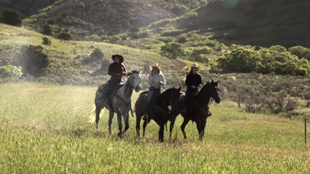 four young cowgirls riding horseback in an alpine field - cowgirl stock videos & royalty-free footage