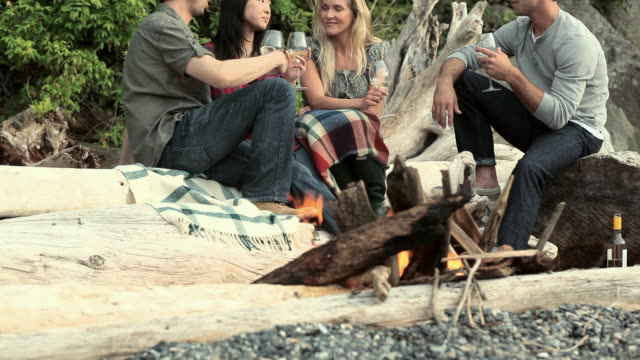 four young people around a campfire - picnic stock videos and b-roll footage