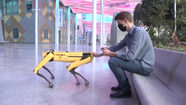 four-legged robot walking the halls of the école des mines in nancy and answering to the sweet name of scar - robotics stock videos & royalty-free footage