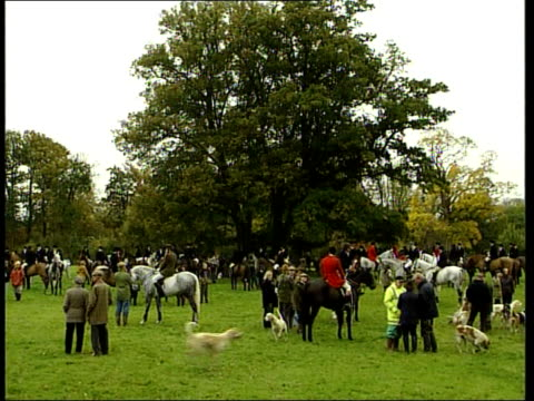 prince william row itn england suffolk ext fox hunters and hunt supporters gathered in field hunters sat on horses pan huntsmen sat on horses with... - foxhound stock videos & royalty-free footage