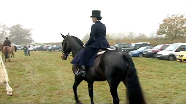 foxhunters take part in first hunt of the season; england: kent: edenbridge: ext hunters on horses along into field / hounds into field / hunters on... - foxhound stock videos & royalty-free footage