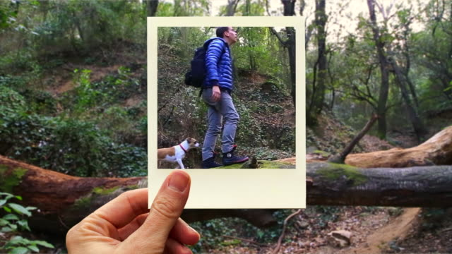 vídeos y material grabado en eventos de stock de framing hiker and dog crossing fallen tree with instant print picture from personal perspective. - fotografía imágenes