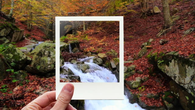 vídeos y material grabado en eventos de stock de framing stunning autumn forest and creek with instant print picture from personal perspective. - transferencia de impresión instantánea