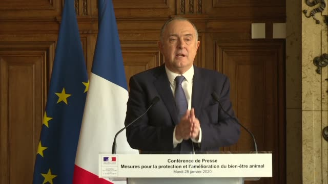 france is to ban from the end of 2021 the hugely controversial but widespread poultry industry practice of systematically slaughtering male chicks... - landwirtschaftsminister stock-videos und b-roll-filmmaterial