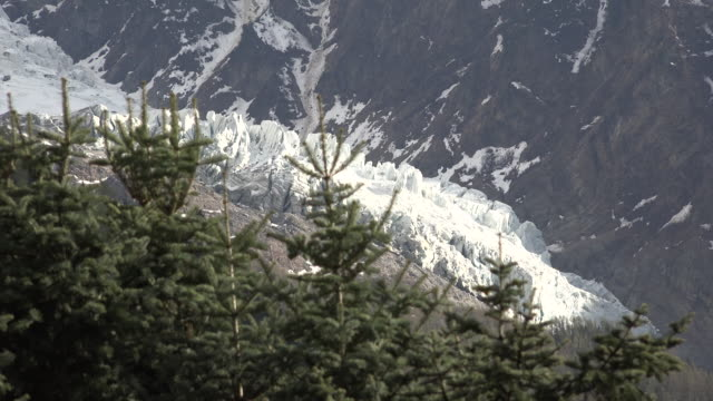 france mont blanc detail of glacier with evergreen trees.mov - soft focus stock videos & royalty-free footage