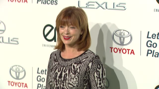 frances fisher at the 2013 environmental media awards presented by toyota & lexus at warner bros. studios in burbank, ca on 10/19/13 in burbank, ca . - environmental media awards stock videos & royalty-free footage
