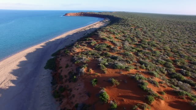 12 Francois Peron National Park Video Clips & Footage