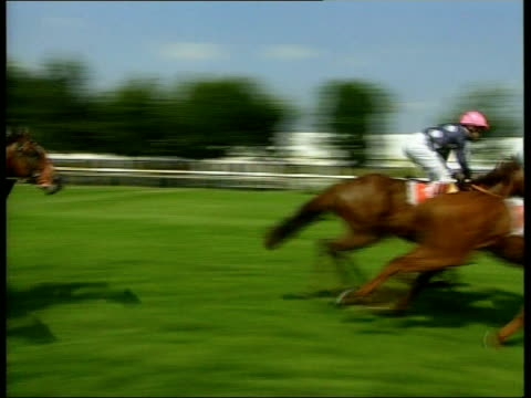 frankie dettori back after plane crash england cambridgeshire newmarket ext horses towards past pan to i/c - horse racing stock videos & royalty-free footage
