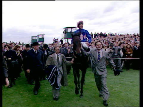 frankie dettori enters winners enclosure on fujiyama and jumps off in trademark style after completing his magnificent seven consecutive winners,... - enclosure stock videos & royalty-free footage